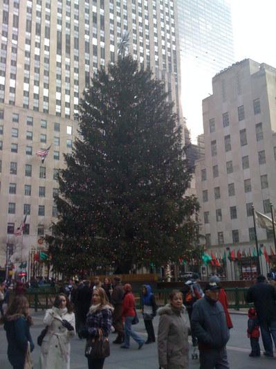 Wo Steht In New York Der Weihnachtsbaum.Weihnachten In New York Der Weihnachtsbaum Am Rockefeller Center In